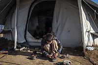 IRAK, Bashika: One of the children of the Khamsa family put his shoes on in front of his small tent. He and his family  just arrived from Mosul in Bashik  where they have to wait to be transfered to a IDP camp, the 11th December 2016. <br /> <br /> <br /> IRAK, Bashika: Un des enfants de la famille Khamsa met ses chaussures devant sa petite tente. Lui et sa famille viennent d'arriver de Mossoul &agrave; Bashik o&ugrave; ils doivent attendre pour &ecirc;tre transf&eacute;r&eacute;s dans un camp de d&eacute;plac&eacute;s, le 11 d&eacute;cembre 2016.