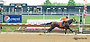 Is It Back winning at Delaware Park on 5/27/15