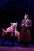 "Musical comedy Betty Blue Eyes, based on the feature film ""A Private Function"" showing at the Novello Theatre, London. Reece Shearsmith as ""Gilbert Chilvers"" with animatronic pig."