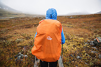 View of orange rain cover on backpack of hiker in rainy weather on Kungsleden trail, Lappland, Sweden