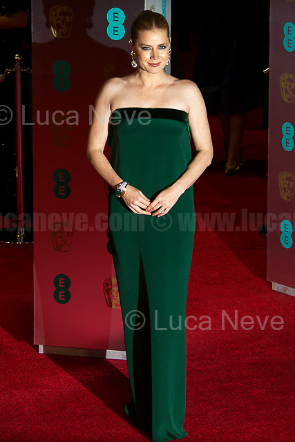 Amy Adams.<br />