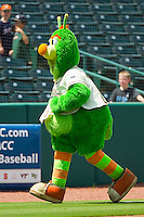 "Greensboro Grasshoppers mascot ""Guilford"" races around the bases between innings of the South Atlantic League game against the Augusta GreenJackets at NewBridge Bank Park on August 11, 2013 in Greensboro, North Carolina.  The GreenJackets defeated the Grasshoppers 6-5 in game one of a double-header.  (Brian Westerholt/Four Seam Images)"