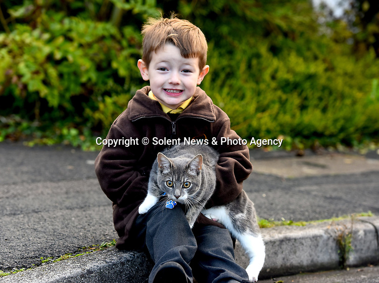 Pictured:  Miles Povey with Rocky the cat who follows him to his school in Southampton.<br /> <br /> Little Miles Povey and his new kitten are so inseparable that when he started school for the first time his pet came too.  The five-year-old walks to and from school every day accompanied by five month old Rocky.<br /> <br /> The grey and white quarter Persian kitten even joins him in classes and has become a firm favourite with Miles' school pals.  Miles joined reception at Oakwood Primary School in Southampton, Hants, last month.  SEE OUR COPY FOR DETAILS.<br /> <br /> © Roger Arbon/Solent News & Photo Agency<br /> UK +44 (0) 2380 458800