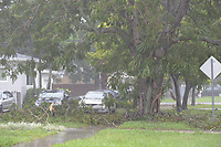 Damage from Hurricane Irma bands in South Miami, FL Sunday Sept 10, 2017.  (Photo by David Adame/For FPL)