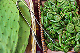 CANADA, Vancouver, British Columbia, edible fiddlehead fern and cactus for sale at the Granville Island Public Market