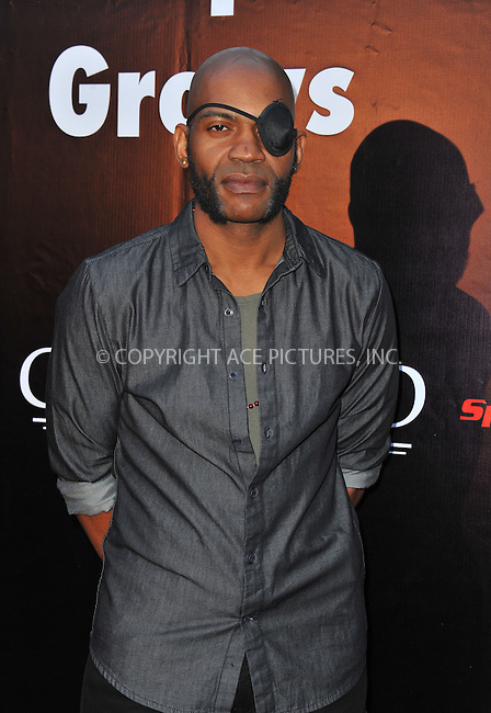 WWW.ACEPIXS.COM<br /> <br /> May 4 2015, LA<br /> <br /> J Louis Mills arriving at the Los Angeles premiere of 'Where Hope Grows' at the ArcLight Cinema on May 4, 2015 in Hollywood, California.<br /> <br /> By Line: Peter West/ACE Pictures<br /> <br /> <br /> ACE Pictures, Inc.<br /> tel: 646 769 0430<br /> Email: info@acepixs.com<br /> www.acepixs.com