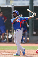 Jeudy Valdez of the Chicago Cubs bats during a Minor League Spring Training Game against the Los Angeles Angels at the Los Angeles Angels Spring Training Complex on March 23, 2014 in Tempe, Arizona. (Larry Goren/Four Seam Images)