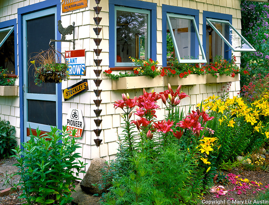 Vashon Island, WA<br /> Garden shed with window boxes, antique seed signs and surrounding garden