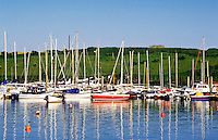 Sail boats in harbor, Kinsale, County Cork, ireland