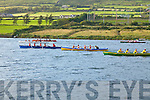 Action from the Girls U14 race at The Over The Water Regatta on Sunday, showing the Portmagee boat El Nino out in front.  Portmagee took gold, Sneem in second and Valentia in third place.