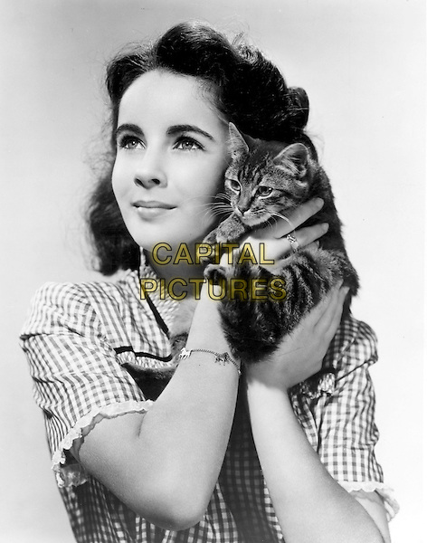 ELIZABETH TAYLOR.headshot portrait child young cat kitten animal pet.*Editorial Use Only*.CAP/STF/PEL.Supplied by Capital Pictures.