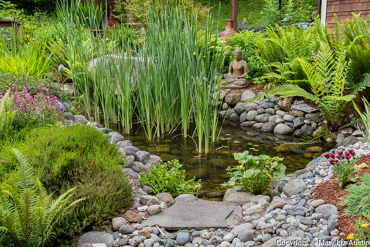 Whidbey Island, Washington: Small pond with iris and ferns in a woodland garden setting