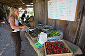The Community Supported Agriculture program at Fairview Garden, allows members to take home seasonal produce on a weekly basis, by pre-paying a year for either a small or large share. The Center for Urban Agriculture at Fairview Gardens is one of the oldest organic farms in California. Goleta