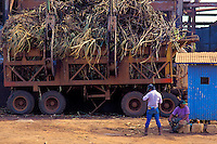 Sugar workers taking a break in front of a cane haul truck at Kekaha Sugar Company
