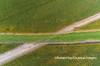 63801-10802 Corn field after it's been cut for silage and waterway-aerial Marion Co. IL