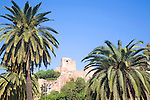 View trough palm trees to historic Alcazaba fortress in the city of Malaga, Spain