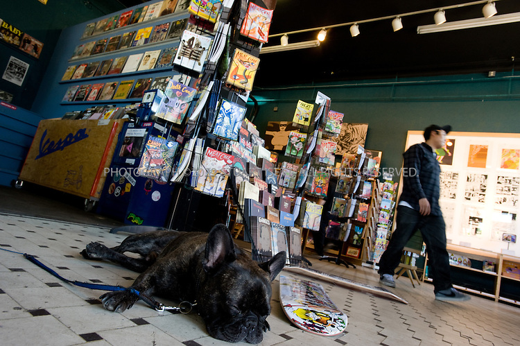 5/15/2008--Seattle, WA, USA<br /> <br /> Fantagraphics Bookstore and Gallery in Georgetown in Seattle, sometimes called the 'Last Outpost of Blue-Collar, Bohemian Arts Culture' in the city. Before being annexed by Seattle in 1910, Georgetown was a wide open saloon town with its own horse racing track, leading a local preacher to dub it &quot;the cesspool of Seattle.&quot; Built up by Boeing workers and the former Rainier Brewery, the neighborhood three miles south of the city faltered in the post-war era. <br /> <br /> &copy;Stuart Isett. All rights reserved.