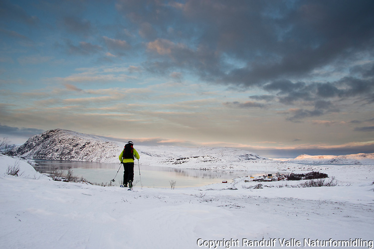 Mann på telemarkski på vei den siste biten ned til Eidvågen på Seiland. ----- Man skiing on Seiland.