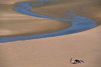 Europe/France/Bretagne/22/Côtes d'Armor/Sables d'Or Les Pins: Sur la plage