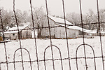 Fancy arch wired mesh fence, old weathered white barn covered with snow, Jackson, Calif.