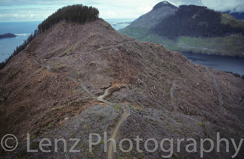 "Yaky Kop Cone, Quatsino Inlet, Vancouver Island. One of the first images to appear in "" CLEARCUT - The Tragedy of Industrial Forestry"", it was dubbed ""Mr. T"" by Doug Tompkins and editor Edgar Boyle."