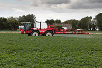 21.7.2020 Blight spraying in Lincolnshire <br />  ©Tim Scrivener Photographer 07850 303986<br />      ....Covering Agriculture In The UK.