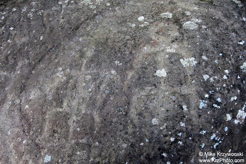 Petroglyphs on Large Boulder in Pearl City, Oahu, Hawaii