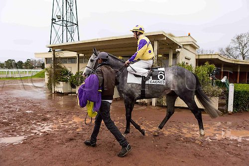 27.02.2016. Cagnes sur Mer, France. 3rd Race of the day Prix Jacques Bouchara.   6 THUMPER, E. HARDOUIN