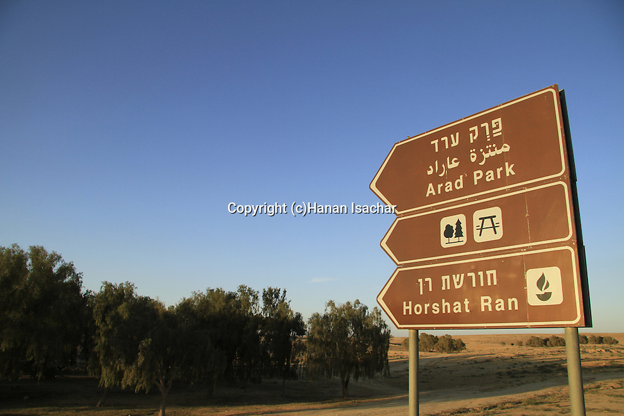 Israel, Negev, a view of Arad Park