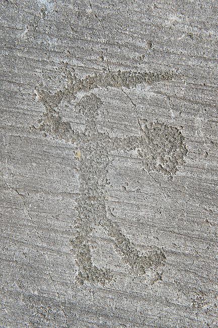 Petroglyph, rock carving, of a warriors with a shield and sword. Carved by the ancient Camuni people in the iron age between 1000-1200 BC. Rock no 6, Foppi di Nadro, Riserva Naturale Incisioni Rupestri di Ceto, Cimbergo e Paspardo, Capo di Ponti, Valcamonica (Val Camonica), Lombardy plain, Italy