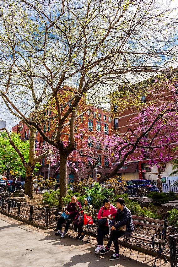 Columbus Park, Chinatown, New York, New York USA.