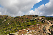 Scree walls along the Appalachian Trail (Franconia Ridge Trail) on the summit of Little Haystack Mountain in the White Mountains of New Hampshire during the last days of summer. Scree walls are built on the edge of trails to discourage hikers from going off trail. Building these small walls helps protect the fragile alpine habitat.