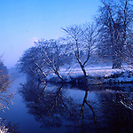 Trees reflected in the river Swale, north Yorkshire,England,