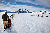 USA, Alaska, Juneau, dogs pull sleds and participants across the Juneau Ice Field, Helicopter Dogsled Tour flies you over the Taku Glacier to the HeliMush dog camp at Guardian Mountain above the Taku Glacier