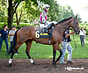 Cash for Clunkers before The Unbridled Belle Stakes at Delaware Park on 8/15/13