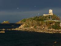 Sud Italia e Isole