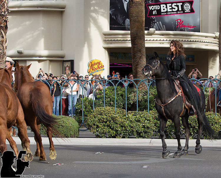 Shania Twain rides into Caesars Palace  behind a herd of horses for the kick off her press conference