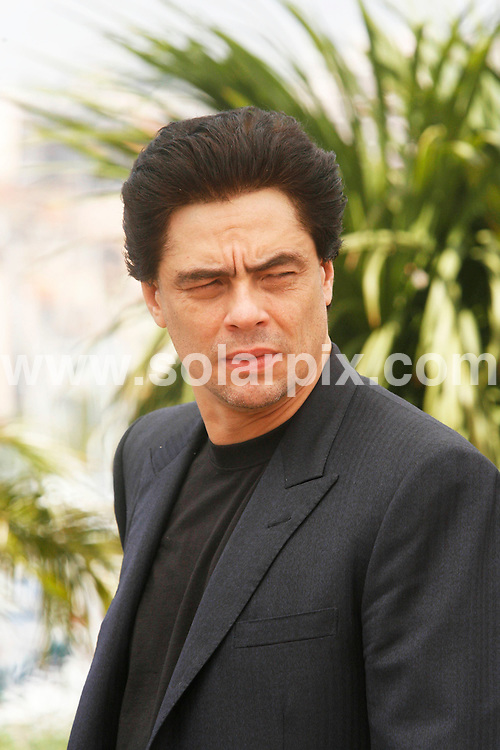 **ALL ROUND PICTURES FROM SOLARPIX.COM**.**SYNDICATION RIGHTS FOR UK, SPAIN, PORTUGAL, AUSTRALIA, S.AFRICA & DUBAI (U.A.E) ONLY**.The 2008 Cannes Film Festival the film Che Photocall at the Palais des Festivals in Cannes in France .This pic:Benicio Del Toro .JOB REF:6495-PHZ/ Pixplanete        DATE:22_05_08 .**MUST CREDIT SOLARPIX.COM OR DOUBLE FEE WILL BE CHARGED* *UNDER NO CIRCUMSTANCES IS THIS IMAGE TO BE REPRODUCED FOR ANY ONLINE EDITION WITHOUT PRIOR PERMISSION*