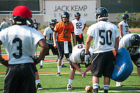 Football practice at Occidental College, Aug. 17, 2012, Patterson Field in Kemp Stadium. (Photo by Marc Campos, Occidental College Photographer)