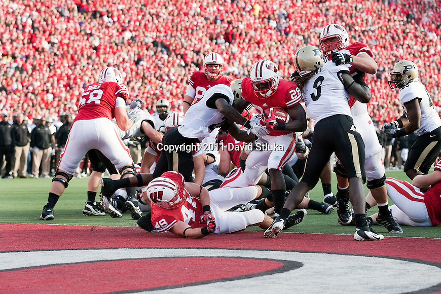 Wisconsin Badgers running back Montee Ball (28) scores a touchdown during an NCAA Big Ten Conference college football game against the Purdue Boilermakers on November 5, 2011 in Madison, Wisconsin. The Badgers won 62-17. (Photo by David Stluka)