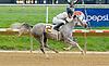 Dancing Misty winning at Delaware Park on 9/26/12