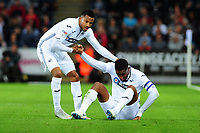 Martin Olsson (left)  and Leroy Fer (right) of Swansea City during the Sky Bet Championship match between Swansea City and Leeds United at the Liberty Stadium, Swansea, Wales, UK. Tuesday 21 August 2018