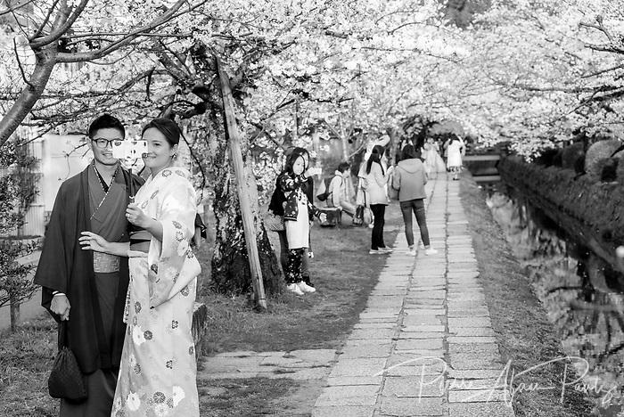 Kyoto, chemins des philosophes
