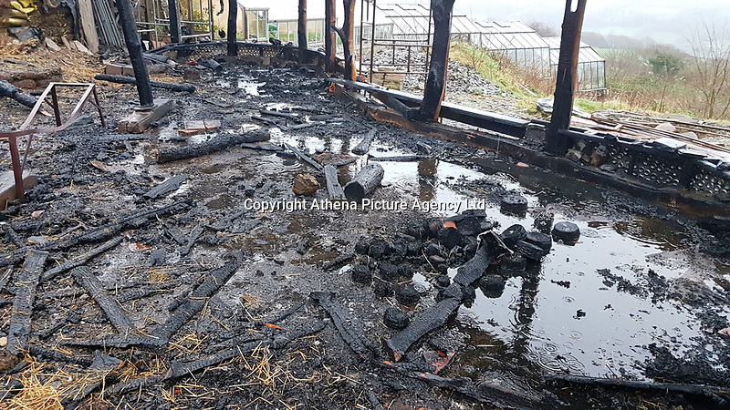 Pictured: The destroyed house. Friday 05 January 2017<br /> Re: A house that was featured in Channel 4 programme Grand Designs has been destroyed in a fire. The house, owned by Simon and Jasmine Dale is located at the Lammas Eco village near Glandwr in west Wales, UK.