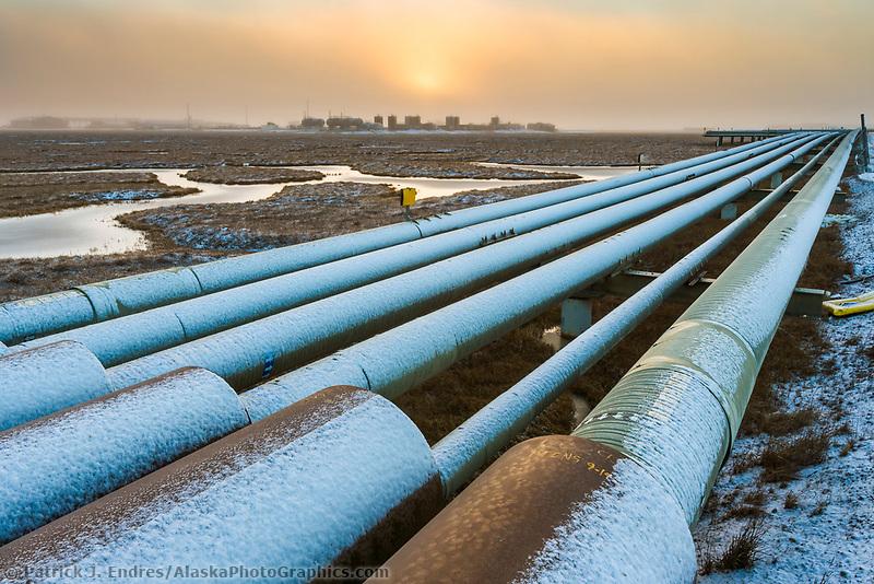 Pipe array in the Prudhoe Bay oil field, Arctic Coastal Plain, Alaska.