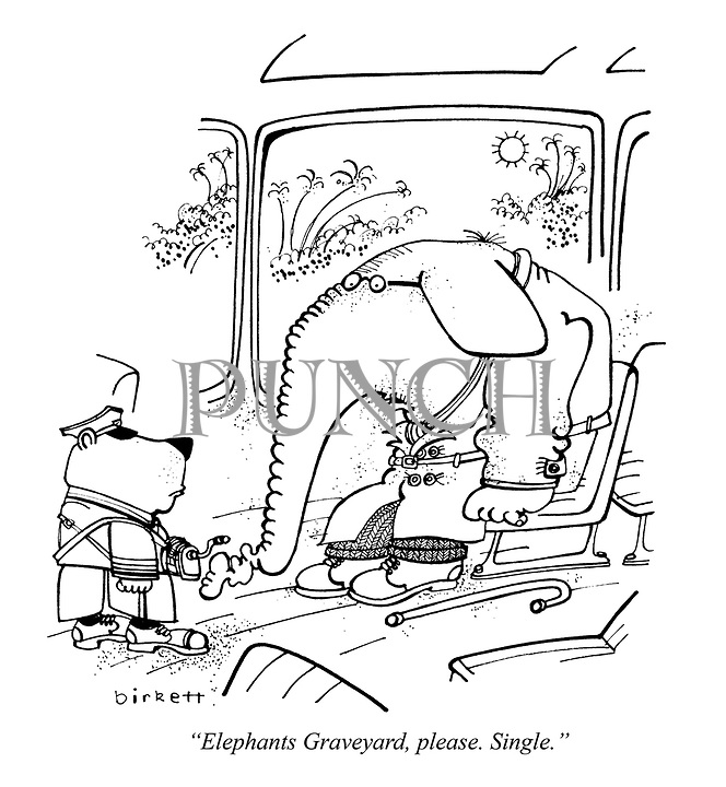 """Elephants Graveyard, please. Single."""