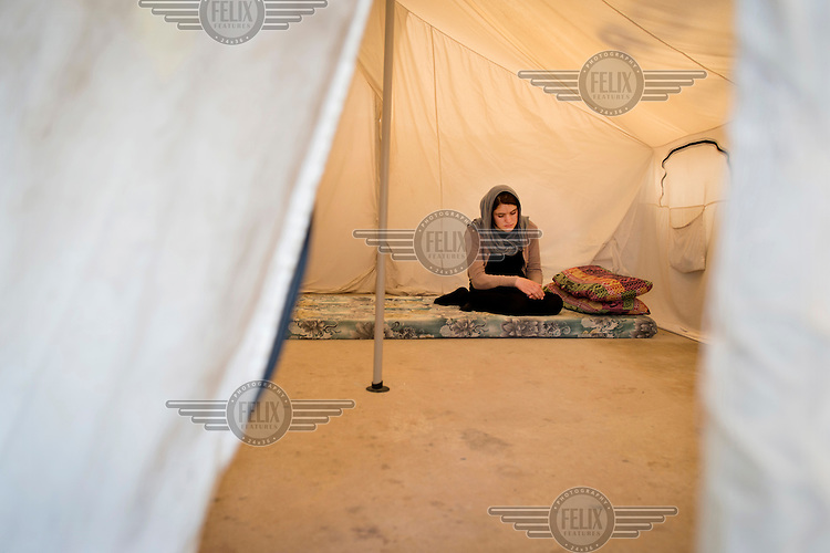 A 13 year old Yazidi girl who was captured by Islamic State (IS) on 3 August 2014 sits in her tent in a refugee camp in Dohuk. She was taken to several locations in Syria and Iraq. She was beaten with sticks after a cat defecated on a Quran and Yazidi girls in IS captivity were blamed for the incident. One day, while the a group of Yazidi girls were told to take a shower, one of the girls committed suicide. After three months this girl was finally able to escape through a window of a building with a number of other girls. Her parents, four of her sisters and her brother are still in IS captivity.