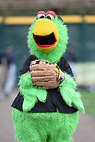 Pittsburgh Pirates mascot, The Pirate Parrot, before a spring training game against the New York Yankees on February 26, 2014 at McKechnie Field in Bradenton, Florida.  Pittsburgh defeated New York 6-5.  (Mike Janes/Four Seam Images)