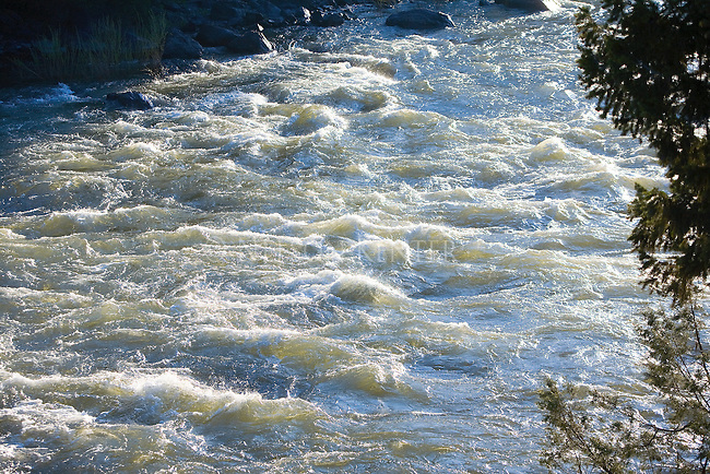 Sun light skimming the whitewater surface at Roundup Rapids on the Blackfoot River in Montana