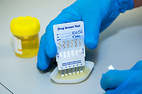 Six panel dip test drug kit